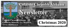 Christmas Newsletter 2020